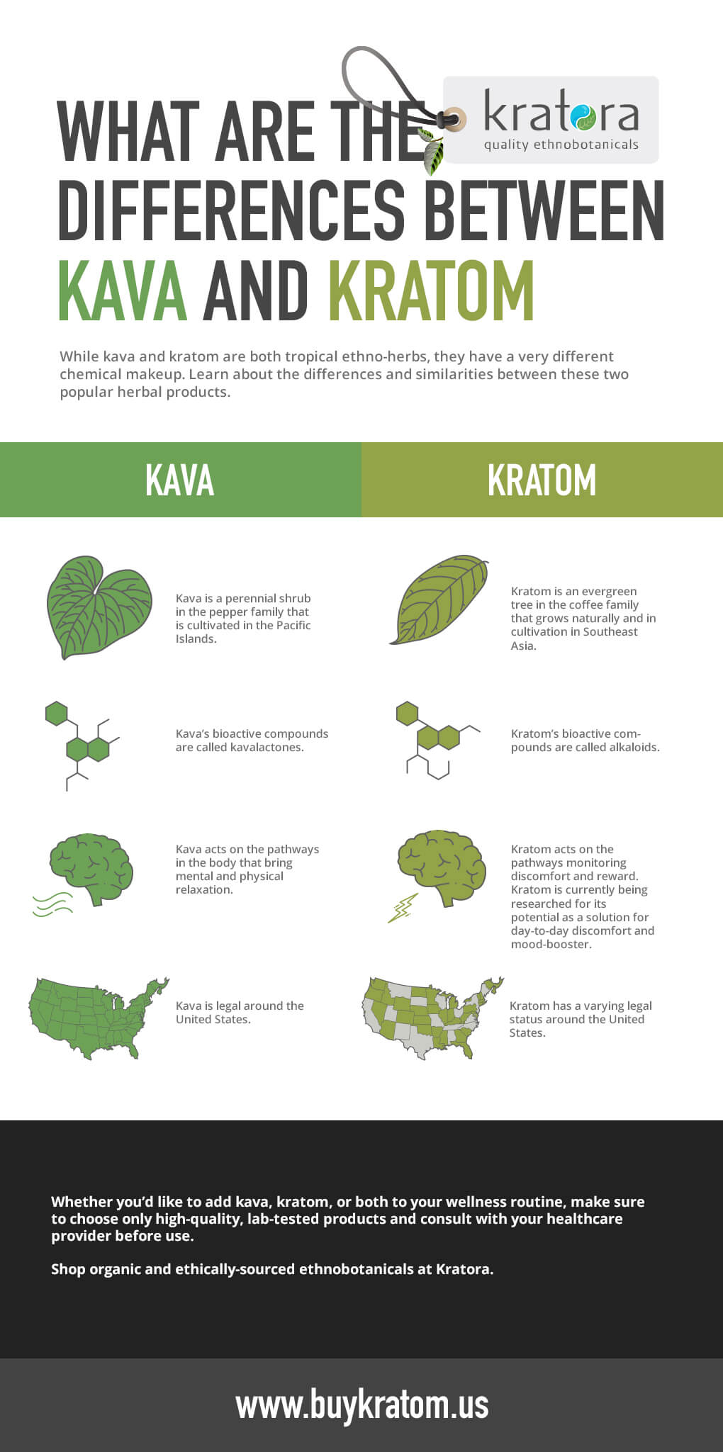 differences-between-kava-and-katom