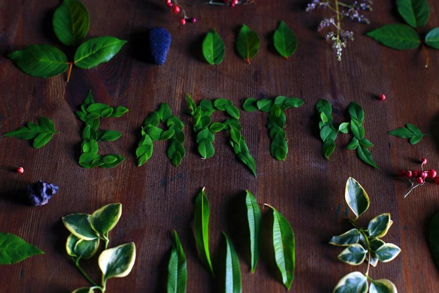 """The word """"EARTH"""" spelled out with leaves and surrounded by plant"""