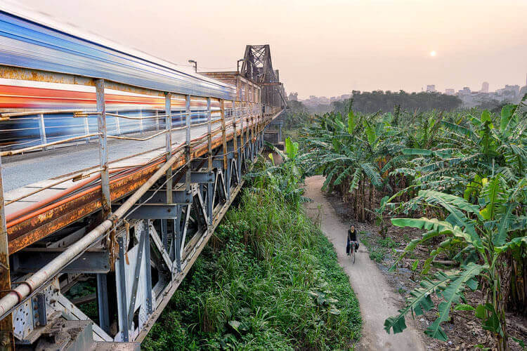 Woman rides her bike through a jungle path while a train passes on a bridge overhead